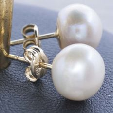 18 kt gold earrings with cultured pearls, 8 mm