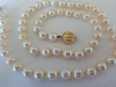 Japanese Akoya pearl necklace 14kt / 585 white rose