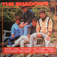 The Sound of The Shadows and The Voice of Cliff Richard 23 LP's and a Double Album.