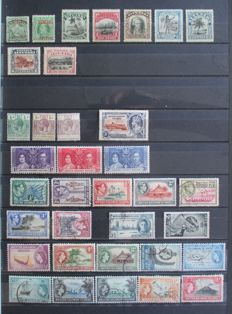 British Commonwealth in Oceania – Collection on stock pages