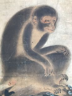 Scroll with monkey and blossom - Japan - 18th/19th century (Edo period)