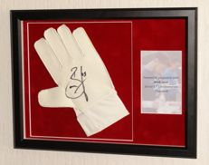 Brad Jones origineel gesigneerde keepershandschoen- Premium Framed + Certificate of Authenticity