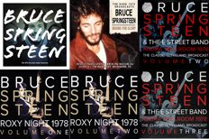 Bruce Springsteen Vinyl Collection