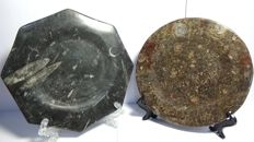 Decorative plates, cut and polished from fossil stone with ammonites and orthoceras - 19 x 19 - 1.055 kg. (2)