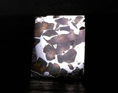 Meteorite - Seymchan Pallasite, PMG - Iron. Valid (IIE) Coarse octahedrite - polished and sealed piece with Olivine - 3.30 x 2.85 cm - 11.00 g