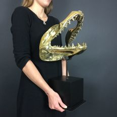 Shark jaw cast in bronze, with stand - 55 x 34 x 26.5 cm