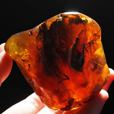 Natural  Golden Baltic  Amber - 57 x 56 x 37mm - 68.8 gram