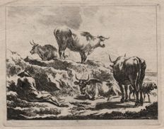Nicolaas Berghem ( 1621-1683 ) : Shepherd with four cows and a sheep - engraver not determined - 17th century