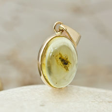 14k Gold and Baltic Amber pendant with Fossil Insect
