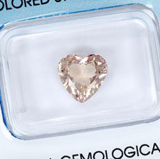 Morganite - 2.04 ct