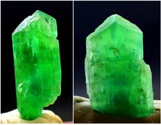 V Shape Terminated Lush Green Kunzite Hiddenite Crystals Pair - 287 carats (2)