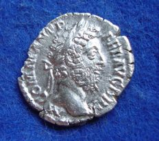 Romeinse Rijk - Denarius of Commodus (180-193 n.Chr.) interesting reverse fortuna with horse! (P545)