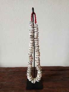 Old original chief necklace, fossilised shells - Sumba - Indonesia