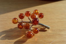 Baltic Amber branch brooch and silver 925. calibrated balls diameter of 6 mm, No reserve price