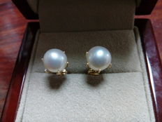 28 kt gold earrings with 8 mm Akoya pearl.