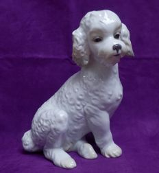 Nao Lladro - Large poodle - 1655 - 30 cm