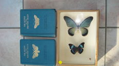 Richard South - The Moths of the British Isles - 2 volumes - 1939