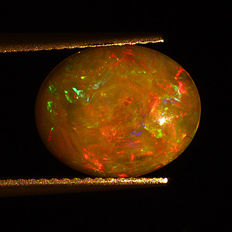 Opal – 2.33 ct – No Reserve Price