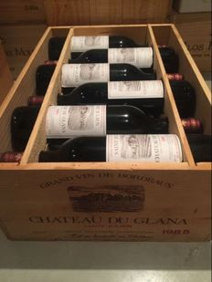 1985 Chateau du Glana, Grand Bourgeois Exceptionnel, 12 bottles OWC