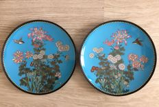 A pair of silver wire cloisonné chargers - Japan - late 19th century (Meiji period)