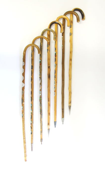 Lot of 7 walking sticks with plaques