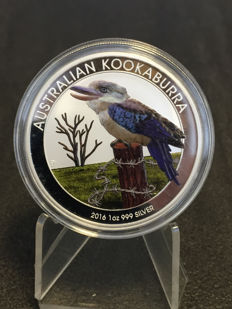 Australien - 1 Dollar Silber 2016 - Stempelglanz - 1 oz 999 Silbermünze Kookaburra - in exclusiver Farbedition