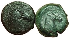 Greek Antiquity - Lot of two Æ - Carthaginians in Sicily and North Africa and Siculo-Punic, c. 2nd-3rd century BC - Head Tanit / Horsehead - Palm tree / Horsehead - Sear 6524 / Muller II, 104
