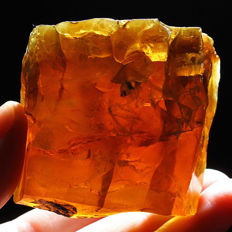 Natural, polished Golden Amber - 51 x 47 x 27 mm - 48.80 g