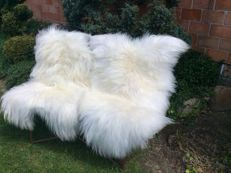 Pair of natural Icelandic sheepskins - Ovis aries - 130 cm (2)