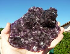 Purple fluorine - 14 x 15 cm - 605 gm