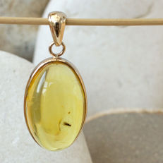 Handmade 9K gold and Baltic amber pendant with insect inclusion