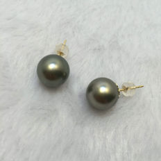 Tahitian black pearl earrings, a pearl diameter 11.2 mm. With 18 karat gold.