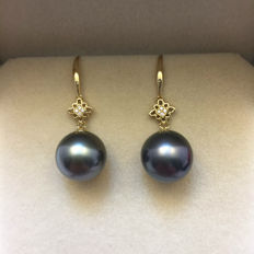 Tahitian black pearl earrings, a pearl diameter 11.3 mm. with diamonds 0.042 ct