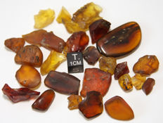 Burmite amber with insects - various sizes - 21 g