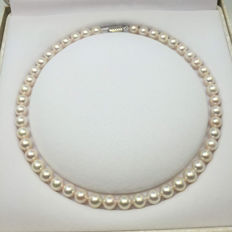 Japan akoya sea pearl necklace. Pearl diameter 8.5-9 mm. Accessories 14K gold.