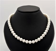 Freshwater pearl necklace – 1 strand – pearl size approx. 7 mm – 585 gold clasp