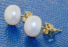 Gold earrings 14 kt with pearl - length: 0.8 x 0.8 cm