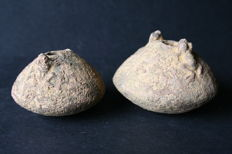 Pre-Columbian art - Two ceramic pots both overlaid by two small frogs. Large 66 mm. And 56 mm .