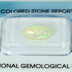 White Opal - 1.65ct No Reserve Price
