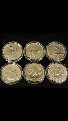Kanada - 6 x 5 CAD - Vollständiges Wildlife Set - 6 x 1 oz Wolf - Grizzly Bär - Puma - Elch - Bison - Antilope