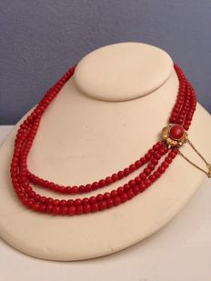 Antique precious coral necklace with gold clasp – 19th century