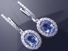 Earrings with exclusieve sapphire 2.00ct and  48 brilliant cut diamonds totaal 0.70 ct. - length of the earrings: 3cm