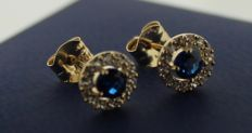 Gold earrings of 14 kt inlaid with sapphire – Length:  5 x 5 mm