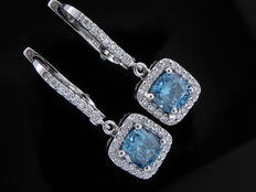 White, 18 kt gold stud earrings set with fancy, intense blue colour diamonds, 1.50 and diamonds of in total 0.30 ct.