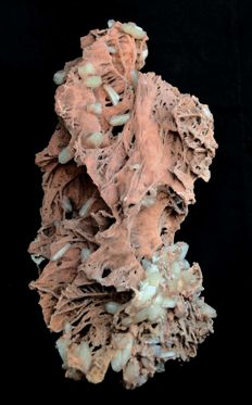 Coral- like red chalcedony with stilbite - 24 x 15 cm - 610 gm
