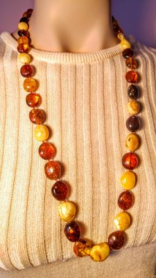 Long Baltic Amber mix color necklace, 42 grams