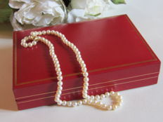 Necklace composed of cultured white pearls, with safety clasp in 18 kt gold.