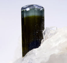 Attractive Tourmaline With Cleavelandite Specimen - 67 x 54 x 36 mm - 105 gm