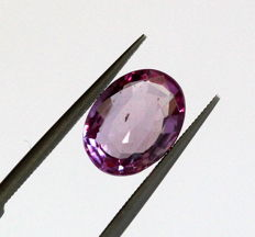 Sapphire - Pink - 1.71 ct