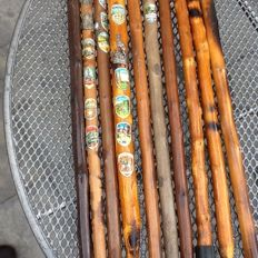 Collection walking sticks 10 piece with plaques